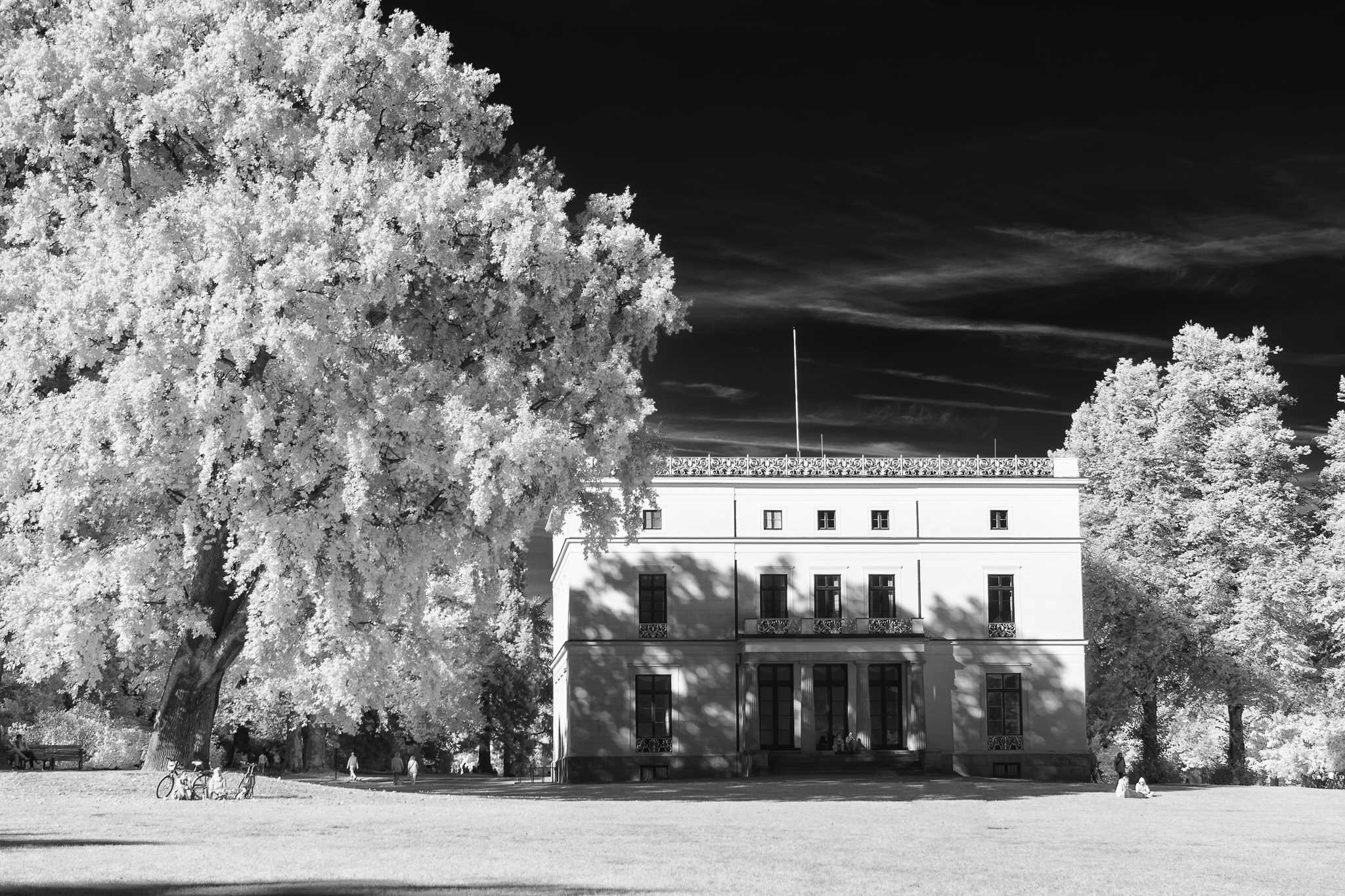 Jenisch house (I)