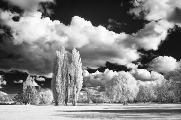 Park at the Alster Lake in Infrared — Saison opening 2017