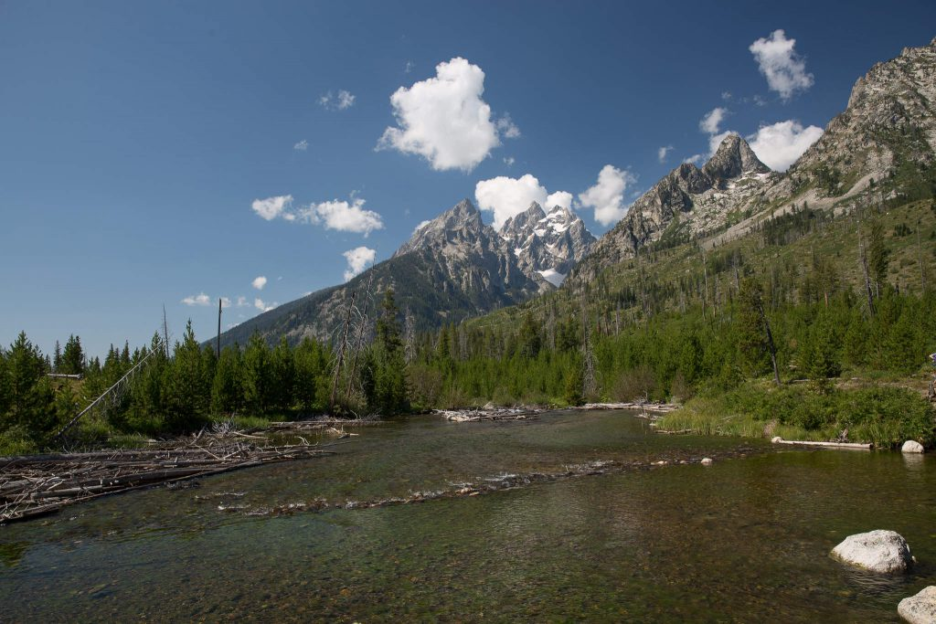 Grand Teton Nationalpark - Jenny Lake Trail (1068)