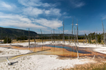 Yellowstone — Black Sand Basin