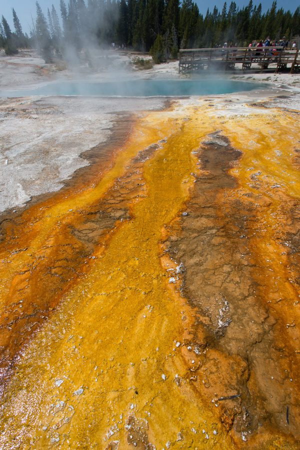 Yellowstone - West Thumb Geyser Basin - BlackPool (1849)