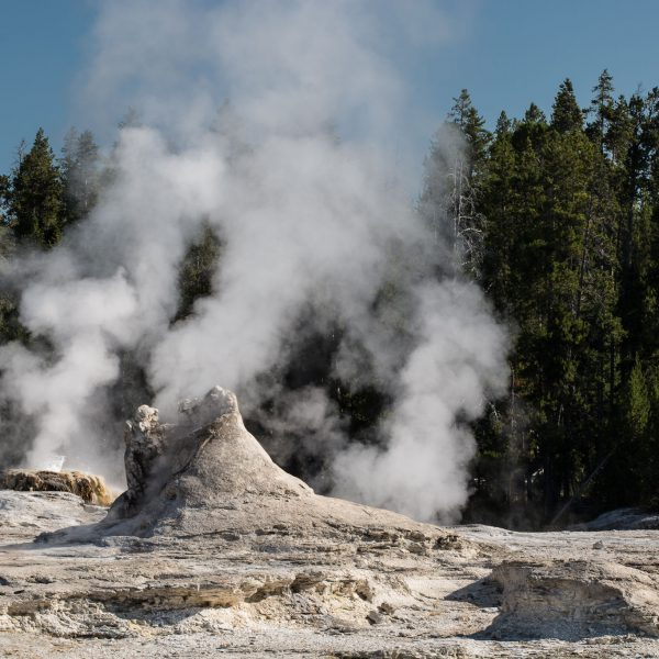 Yellowstone - Giant Geyser (2589)