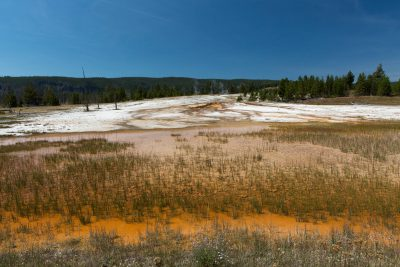 Yellowstone - Biscuit Basin (2725)