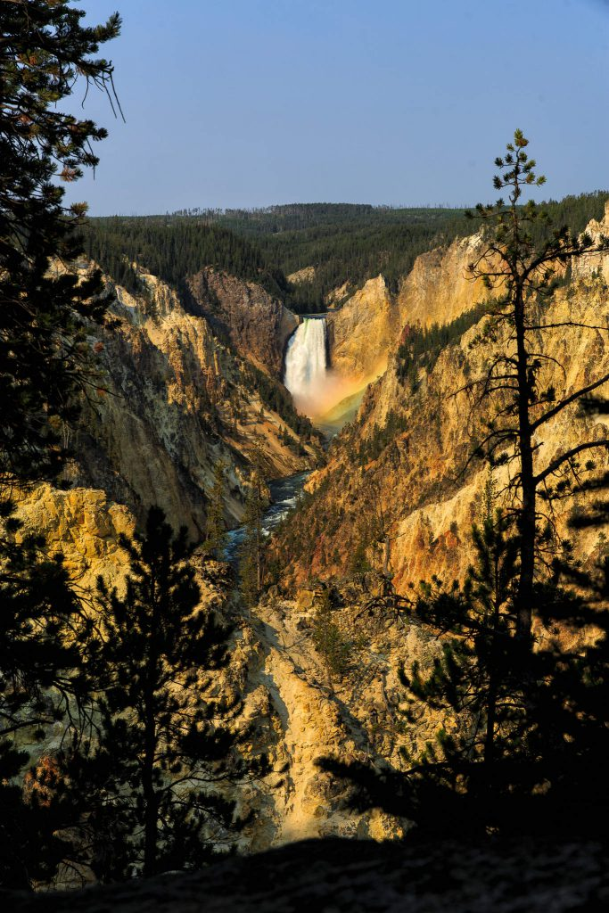 Yellowstone - Grand Canyon of the Yellowstone (3237)