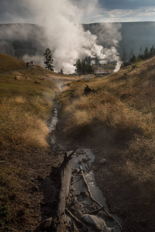Yellowstone - Mud Volcano (3341)