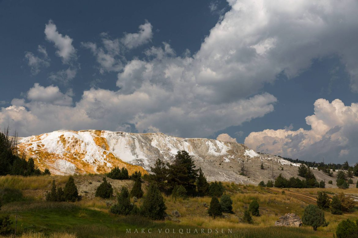 Yellowstone - Mammoth Hot Springs (3698)