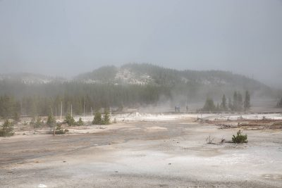 Yellowstone - Norris Geyser Basin (3566)