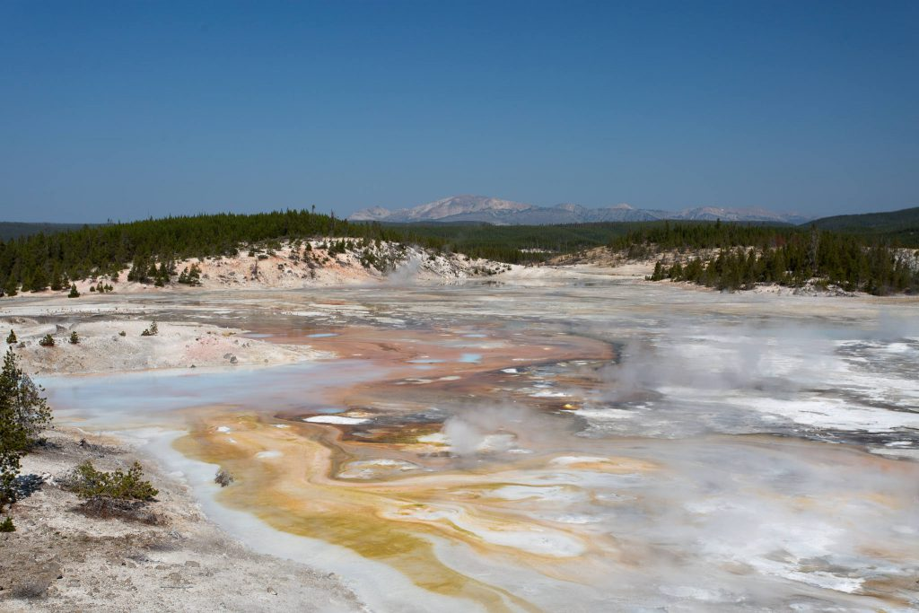Yellowstone - Norris Geyser Basin (3628)