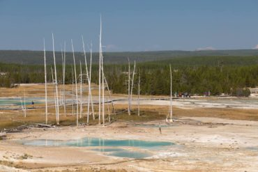 Yellowstone — Norris Geyser Basin