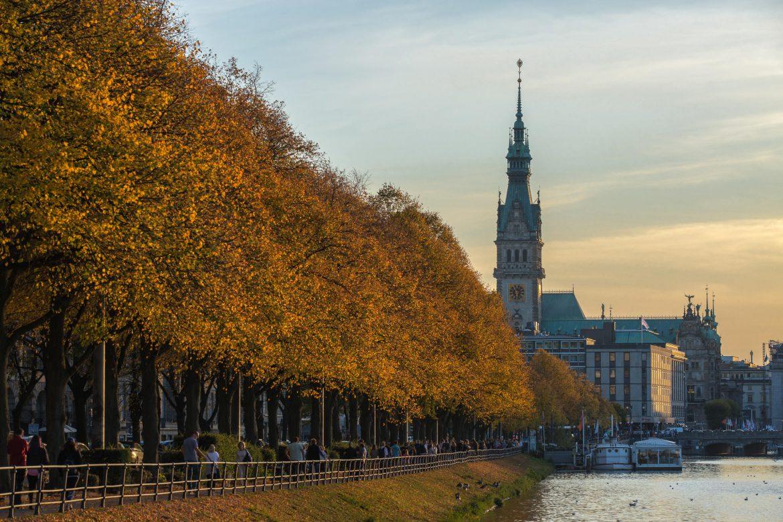Hamburger Rathaus in Herbststimmung