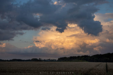 Golden Raincloud (Pano)
