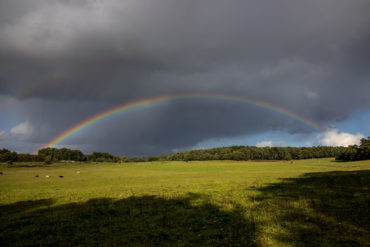 Rainbows over the fields of Dangersen