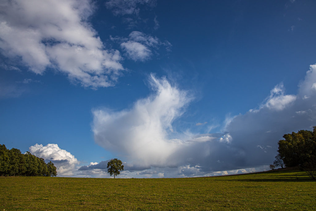 Clouds over meadows (0014)