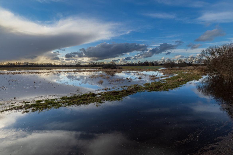 Flooding in Untere Seeveniederung (0054)